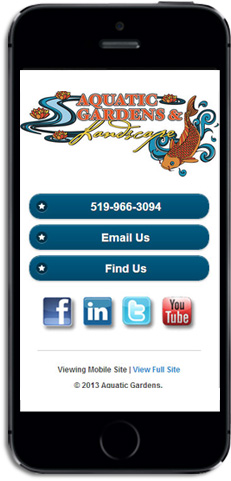 Example of a mobile optimized website